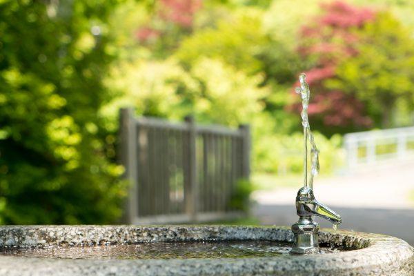 喉が渇いたときに飲むのは水?スポーツドリンク?